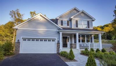 Saratoga Springs Single Family Home For Sale: 447 Pamela La