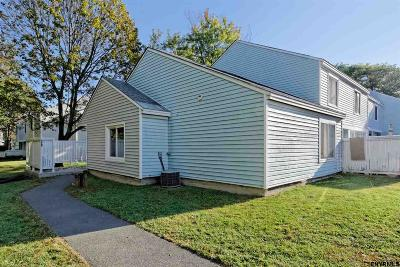 East Greenbush Single Family Home For Sale: 401 Chatham Ct