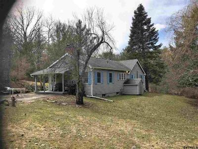 Chatham Single Family Home For Sale: 1528 County Route 13