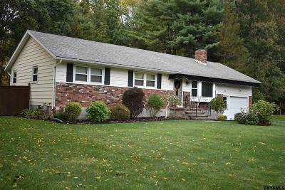 Clifton Park Single Family Home For Sale: 11 Gretel Ter