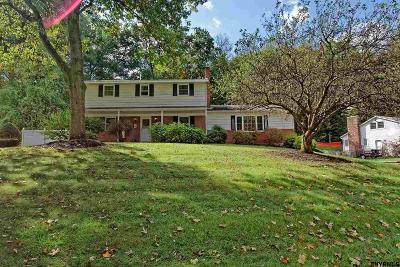 Clifton Park Single Family Home For Sale: 29 Pepper Hollow Dr