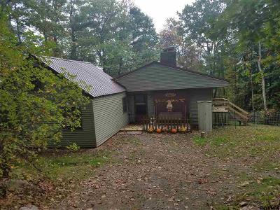 Rensselaer County Single Family Home For Sale: 253 Hanky Mull Rd