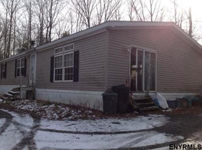 Albany County Single Family Home New: 271 Miller Rd