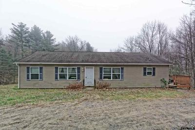 Saratoga County Single Family Home For Sale: 7354 Bills Rd