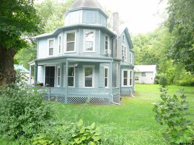 Columbia County Single Family Home For Sale: 296 County Route 25