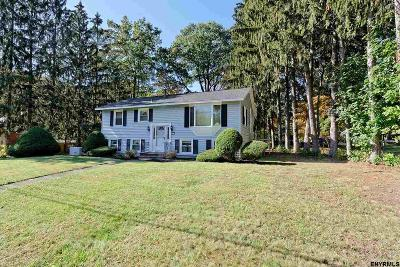 Saratoga County Single Family Home For Sale: 4 Newcastle Rd