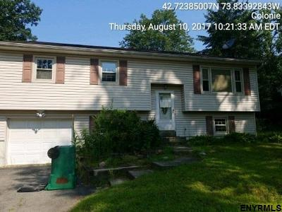 Colonie Single Family Home For Sale: 6 Hartwood St