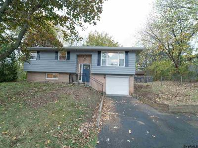 East Greenbush Single Family Home For Sale: 23 Chestnut Ct