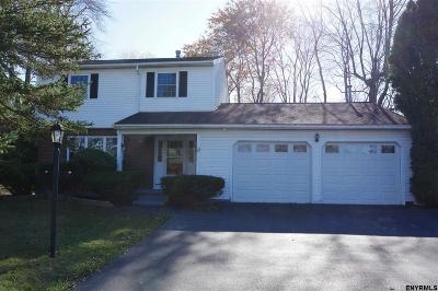 East Greenbush Single Family Home For Sale: 89 Hays Rd