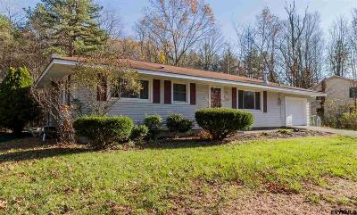 Saratoga County Single Family Home For Sale: 151 Traver Rd
