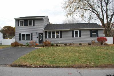 Colonie Single Family Home New: 41 Loralee Dr