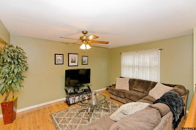 East Greenbush Single Family Home For Sale: 9 Alpine St