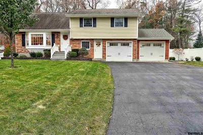Saratoga County Single Family Home New: 840 Greenwood Dr