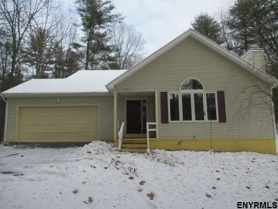 Saratoga County Single Family Home New: 110 Chelsea Dr