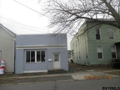 Cohoes Single Family Home For Sale: 166 Vliet Blvd