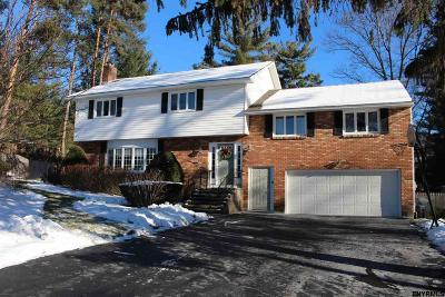 Guilderland Single Family Home For Sale: 953 W Pine Hill Dr