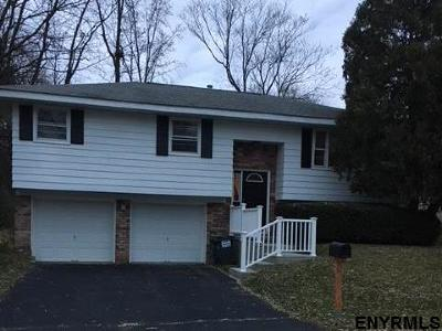 East Greenbush Single Family Home For Sale: 11 Chestnut Ct