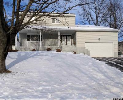 Albany Single Family Home For Sale: 18 Mohican Pl