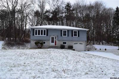 Colonie Single Family Home For Sale: 19 Eberle Rd