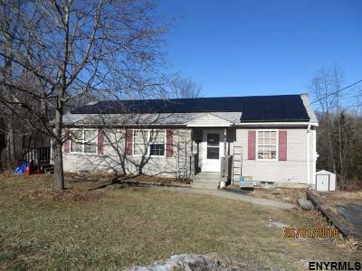 Columbia County Single Family Home For Sale: 19 Regal Rd