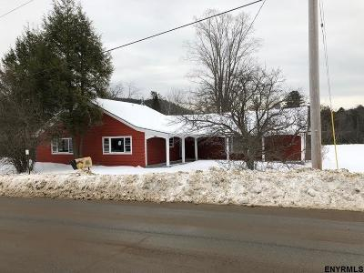 Saratoga County Single Family Home For Sale: 1334 Hadley Hill Rd