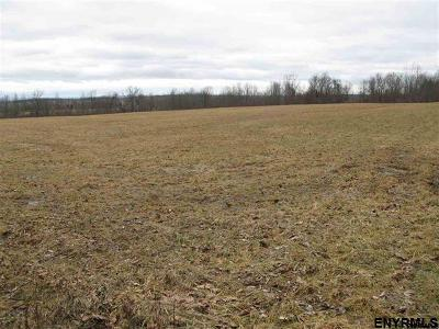 Canajoharie Residential Lots & Land For Sale: Mahr Rd