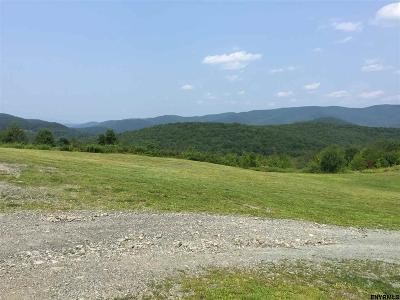 Rensselaer County Single Family Home For Sale: 1393 Ny Highway 2