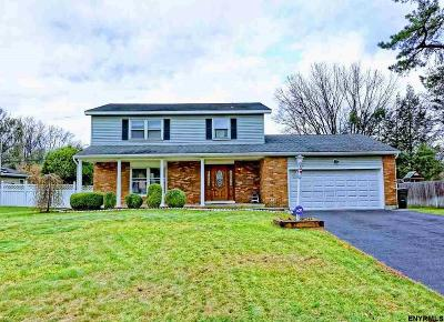 Albany County Single Family Home For Sale: 60 Delafield Dr