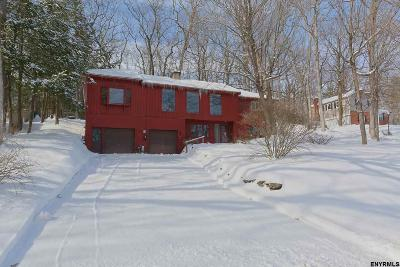 Rotterdam Single Family Home For Sale: 315 Terrace Rd