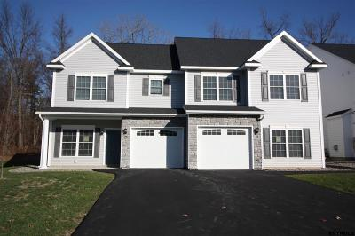 Albany County Single Family Home For Sale: 43 Reutter Dr