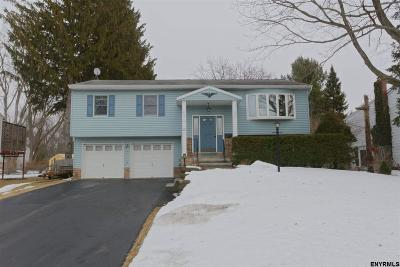 Colonie Single Family Home For Sale: 20 Dussault Dr
