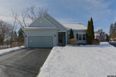 Cohoes Single Family Home For Sale: 17 Wertime Ct