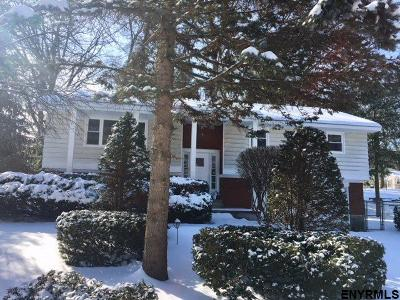 Colonie Single Family Home For Sale: 3 Oak Tree La