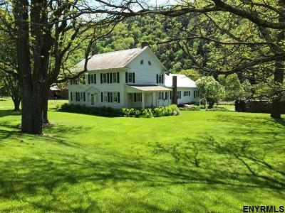 Albany County, Saratoga County, Schenectady County, Warren County, Washington County Single Family Home For Sale: 2054 State Route 313