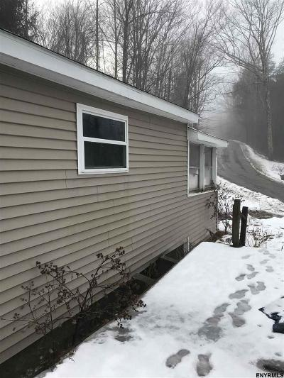 Rensselaer County Single Family Home New: 28 River Rd