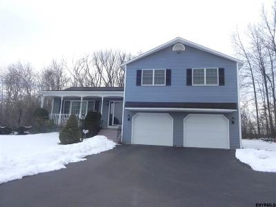 Schenectady County Single Family Home New: 636 Reutter Dr