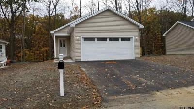 Queensbury, Fort Ann Single Family Home For Sale: 56 Meadowbrook Dr