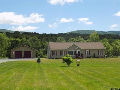 Rensselaer County Single Family Home For Sale: 358 West Rd