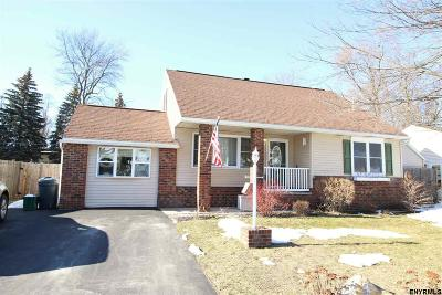 Colonie Single Family Home New: 3 Laurendale St