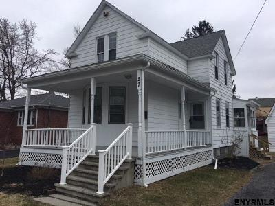 Albany County Single Family Home New: 27 Miller Av