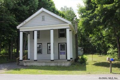 Schoharie County Single Family Home For Sale: 694 Mineral Springs Rd