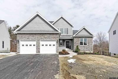 Albany County Single Family Home For Sale: 6 Crailo Ct