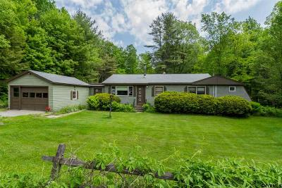 Saratoga County Single Family Home For Sale: 4449 Route 9n