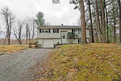Rensselaer County Single Family Home New: 664 Old Best Rd
