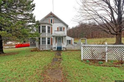 Rensselaer County Single Family Home New: 2052 County Rt 20