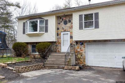 Albany County Single Family Home New: 225 Tompkins Rd