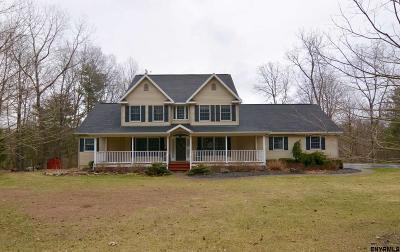 Saratoga County Single Family Home New: 334 Colebrook Rd