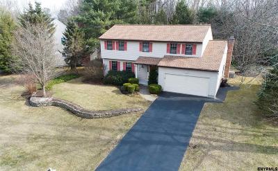 Albany County Single Family Home New: 54 Dover Dr