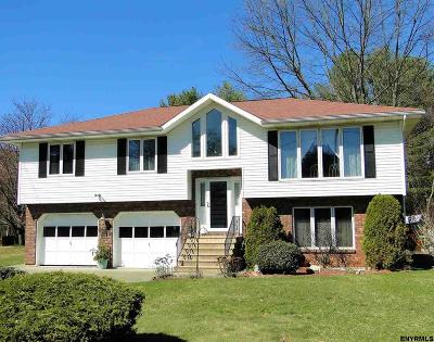 Clifton Park Single Family Home New: 81 A Woodin Rd