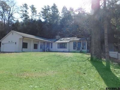 Single Family Home New: 294 East Lake Rd